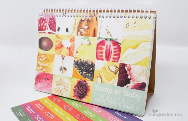 Bump to Baby Pregnancy Journal - An illustrated journey from blueberry to pumpkin